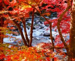 pixta_40614998_夏井川渓谷